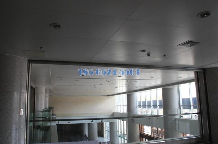 頂層鋁單板吊頂